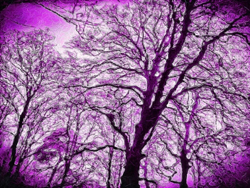 Mobile digital art - purple trees