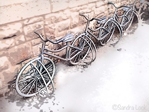 Bicycle rests
