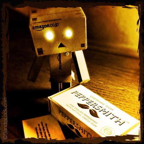danbo figure and peppersmith gum